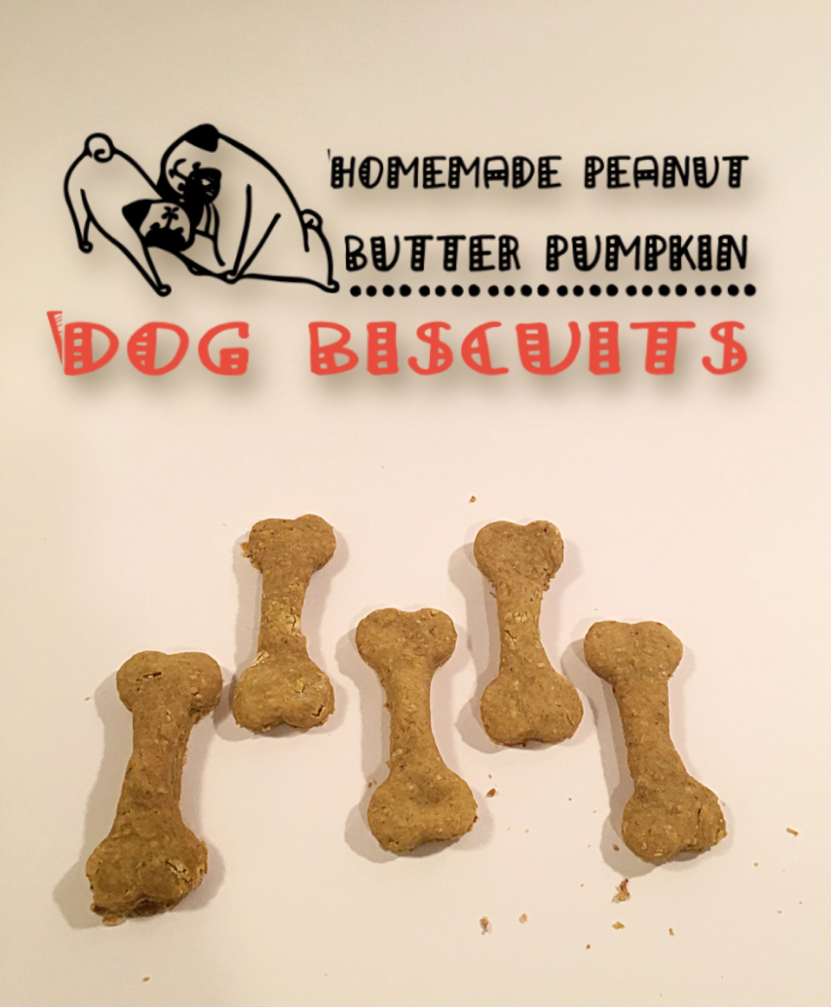 dog biscuits, pumpkin dog biscuits, peanut butter dog biscuits, peanut butter pumpkin dog biscuits, healthy dog biscuits, healthy dog treats, peanut butter pumpkin dog treats, diy dog treats, diy dog biscuits